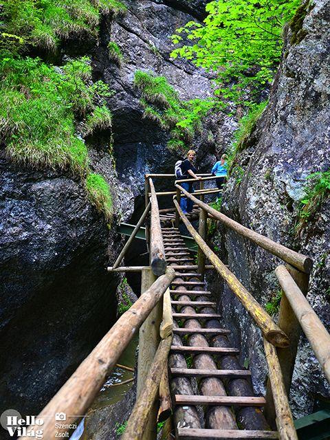 Egynapos kirándulás a Medve-szurdokba | A Medve-szurdok Ausztria legszebb és leghosszabb vizes szurdokvölgye fantasztikus vízesésekkel és zúgókkal tarkítva, monumentális sziklákkal és csodás fenyőerdőkkel övezve. | BUDAVÁRTOURS