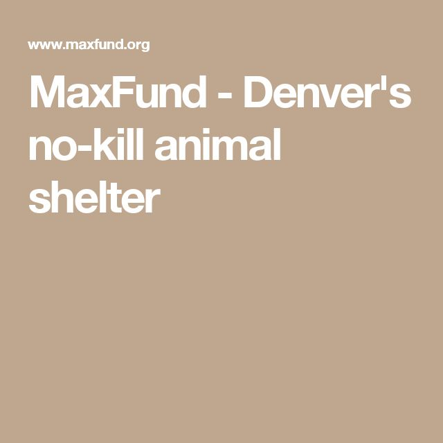 MaxFund - Denver's no-kill animal shelter is a true no kill animal shelter in Colorado, giving animals, including the injured, abandoned and abused, a second chance at life. GLOW for a Cause is proud to support this non-profit!