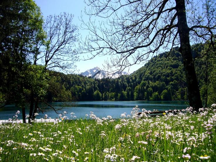 Der Freibergsee wurde wegen seiner wunderschönen Lage im Stillachtal und der ausgezeichneten Wasserqualität des Bergsees längst eine bei Einheimischen und Gästen gleichermaßen beliebte Badegelegenheit in Oberstdorf.