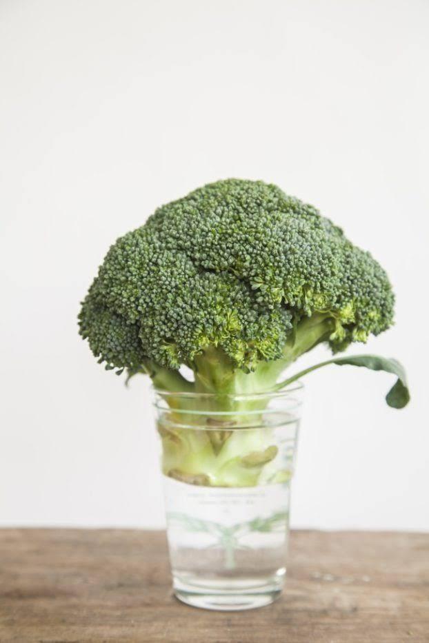 Sie stellt den Brokkoli in ein Glas Wasser und wartet auf das Wunder. Du machst bald dasselbe! | LikeMag | We Like You