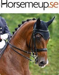 Rabattkoder till Horsemeup Oktober 2016