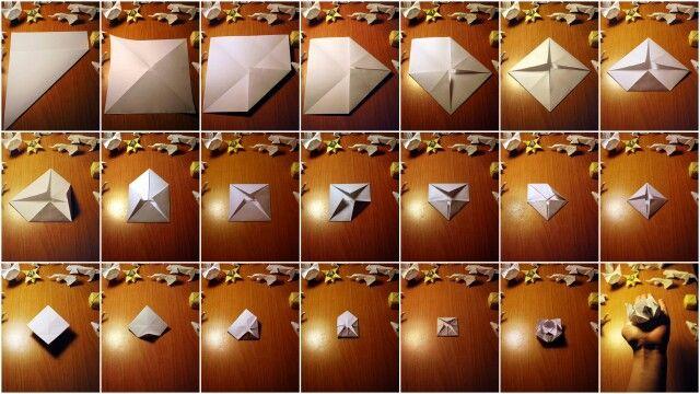 Origami - Lotus