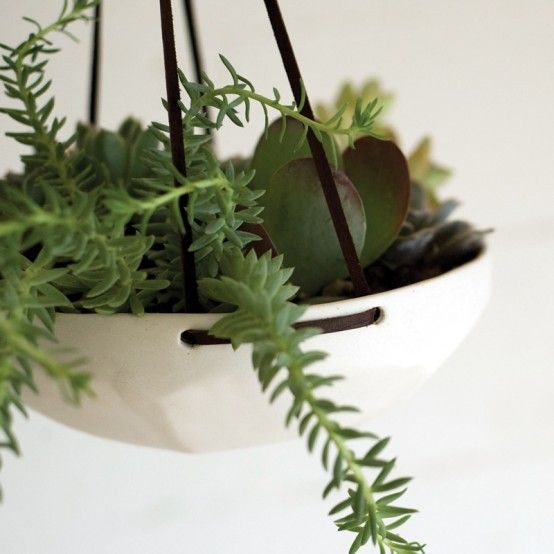 by pigeon toe ceramics: Hanging Plants, Pigeon When, Gardens, Hanging Trays, Hanging Succulents, Hanging Planters, Faceted Hanging, Toe Ceramics, Products