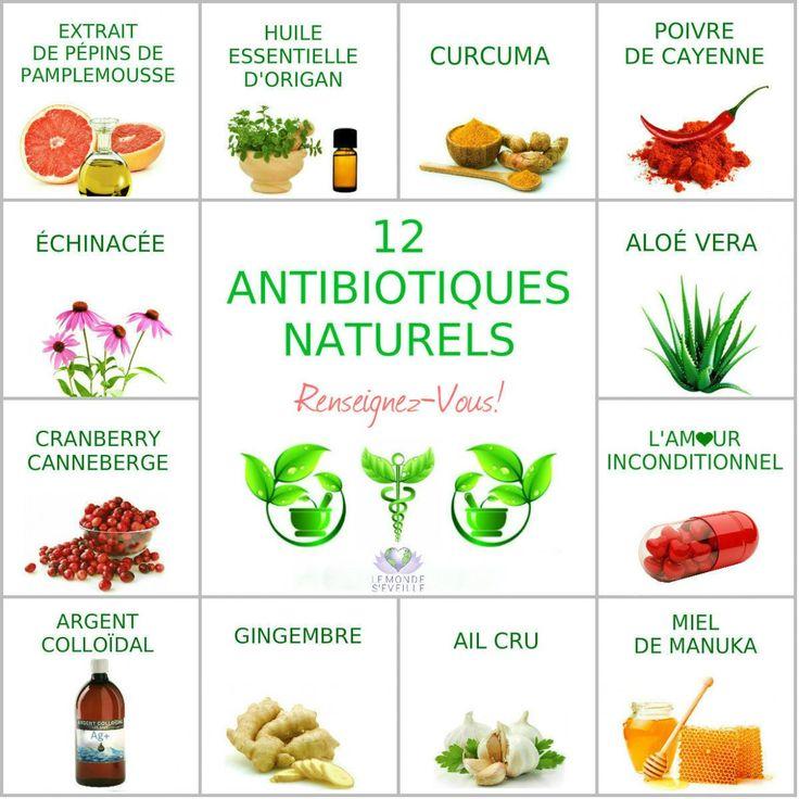 12 ANTIBIOTIQUES NATURELS | Le Monde s'éveille