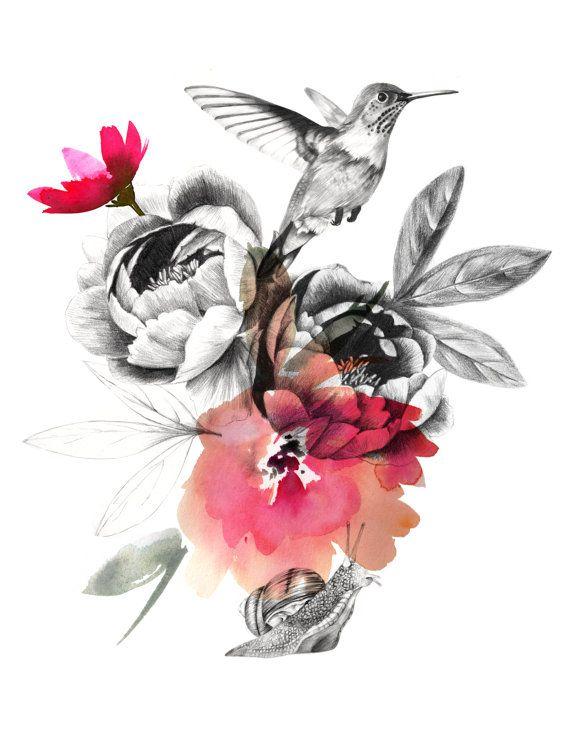 Humming Bird Print Drawing Hummingbird By