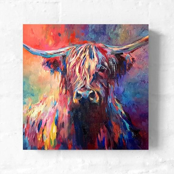 Highland Cow Boxed Canvas With Optional Frame By Sue Gardner Colourful Cow Boxed Canvas Scottish Cow Canvas Highland Cow Painting Highland Cow Canvas