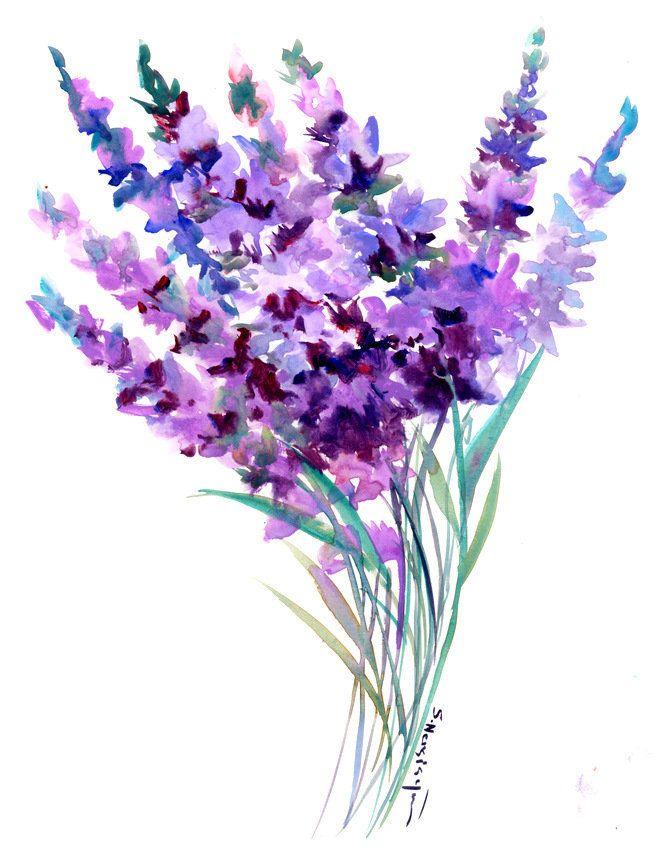 Lavender Artwork, original watercolor painting in ...
