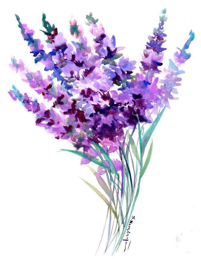 Lavender Artwork Original Watercolor Painting In Abstract Floral