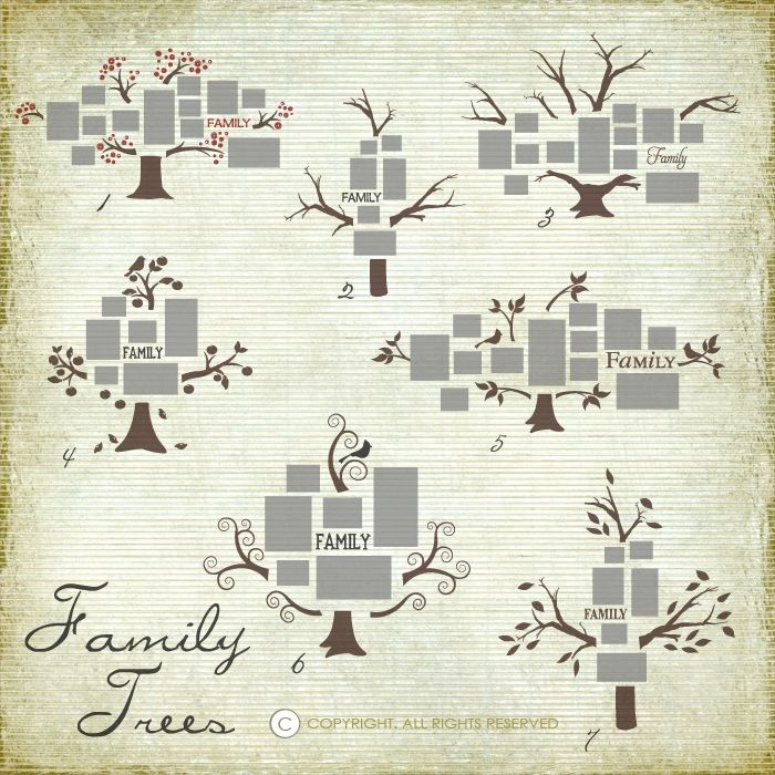 Family Trees for photo walls ~ Great site for vinyl cut files