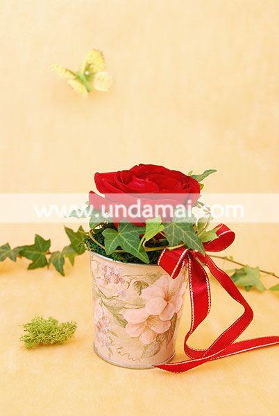 Aranjament floral cu trandafir si iedera in suport vintage