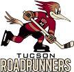 Tucson Roadrunners vs Manitoba Moose Jan 10 2017  Live Stream Score Prediction