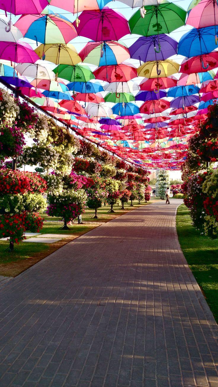 Miracle Garden-Dubai #miraclegarden #dubai