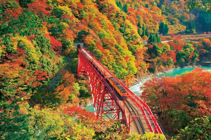 The Kurobe River Gorge: Kurobe-Kyokoku, Toyama, Japan  黒部峡谷の紅葉【富山県】