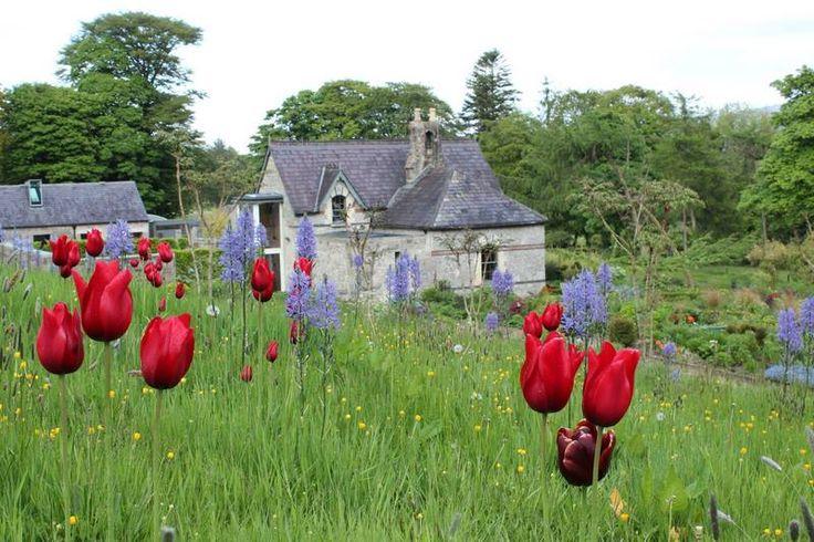 """June Blake's Garden en el condado de Wicklow """"El Jardín de Irlanda"""""""