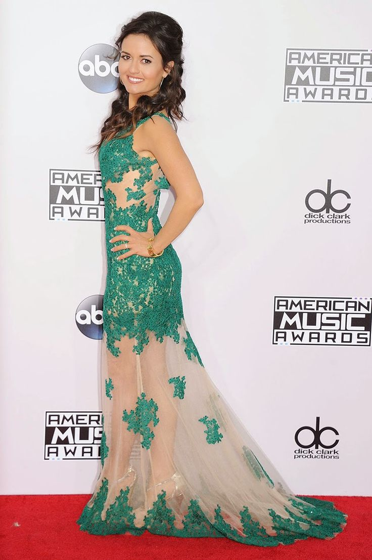 "Danica McKellar at 2014 American Music Awards in Los Angeles.  Danica McKellar showed off her legs in a delicate green lace dress at the American Music Awards on Sunday night. Her pins were just barely visible through the mesh panel along the skirt and she gave just a small peep of cleavage. So tasteful! And yet still super hot! The 39-year-old's half-up/half-down hairdo was a bit ""prom,"" but she was still an overall gorgeous sight!"