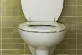 Diarrhea is characterized by frequent watery or loose stools.  Diarrhea can be caused from a wide variety of factors, physical or otherwise. The most basic cause of diarrhea is the insufficient absorption of water in the large intestine.  This typically occurs as a result of some triggering factors, such as medications, infection, inflammation or...
