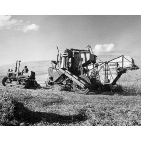 Farmer using a combine harvester in a pea field Washington State USA Canvas Art - (18 x 24)