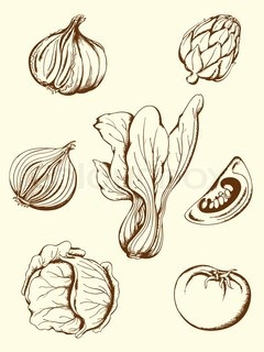 Vector of 'set of hand drawn vector vintage vegetables icons'