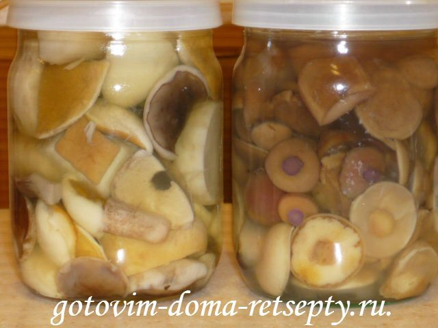 Рецепты: маринованные грибы на зиму