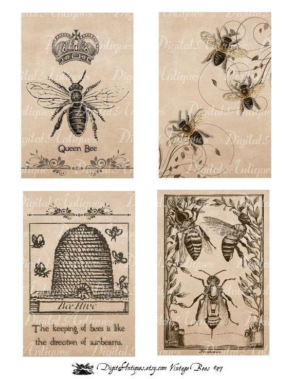 bee printables- transfers