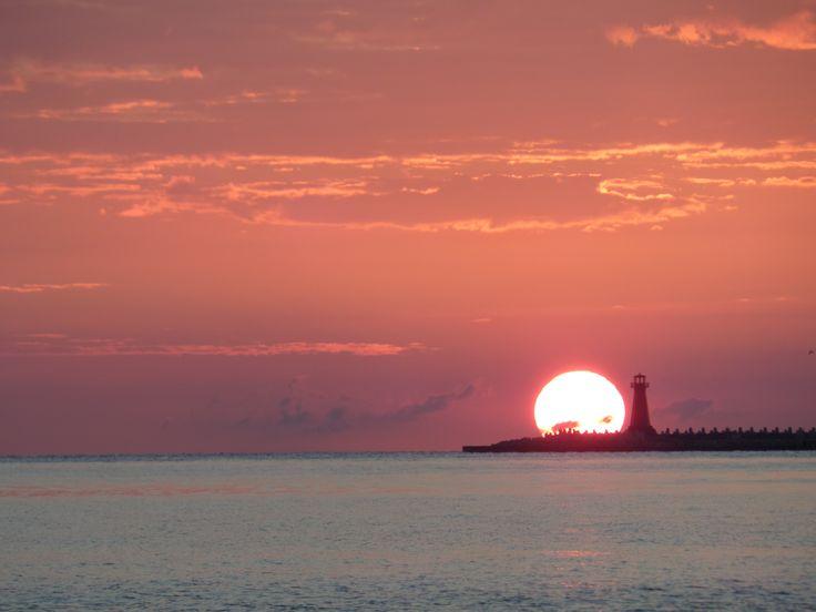 Wschodzące słońca
