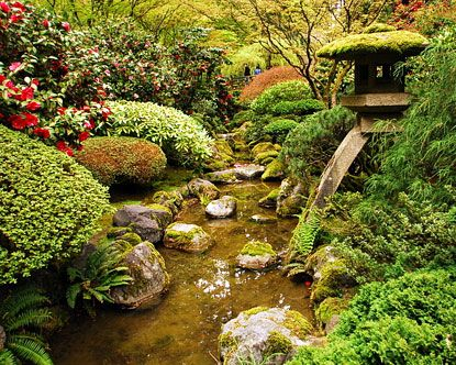 58 best japanese gardens images on pinterest gardens trees and hakone for Portland japanese garden free day