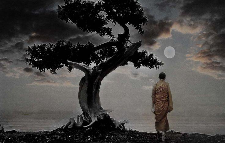"""Faena Sphere   La guía del viajero espiritual  """"El paraíso está en todas partes"""""""