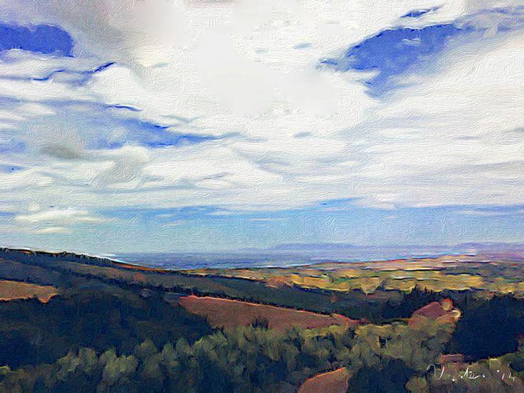 Boland landscape