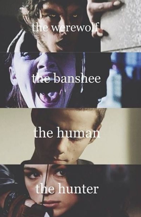 Werewolf; Scott Banshee; Lydia The Human; Stiles The Hunter; Allyson