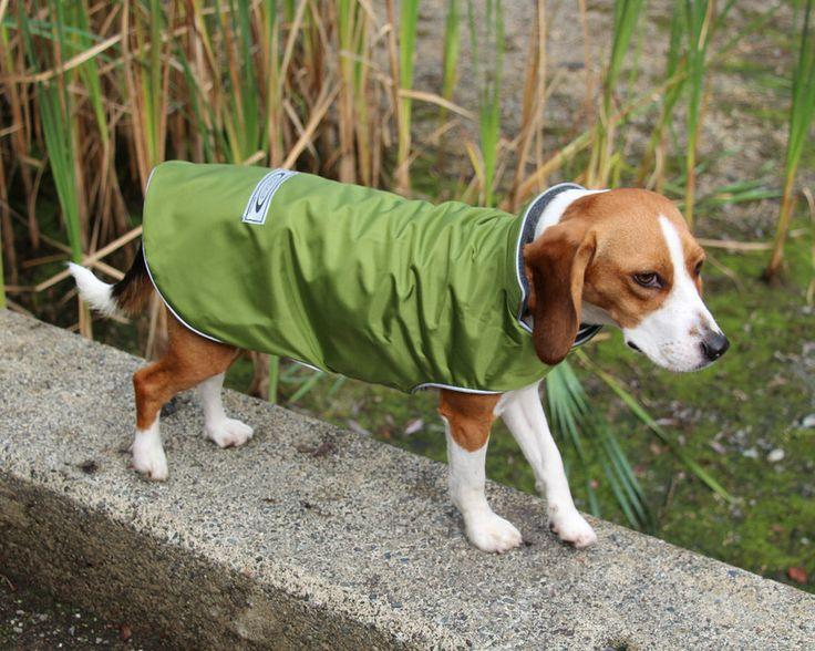 Teckelklub - Best Canadian Winter Dog Coat The Trench, CAN$46.00 (https://www.teckelklub.ca/the-trench-waterproof-dog-coat/)