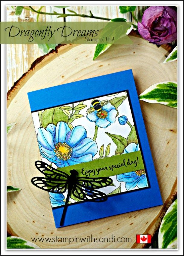 Dragonfly Dreams and Inside the Lines by Sandi @ stampinwithsandi.com