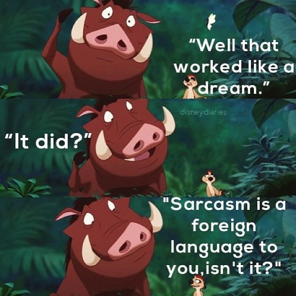 Timon and Pumba   || Remember, I was @prettybigliars (that's my pll account now), I'm disneydiaries(: - @disneydiaries- #webstagram