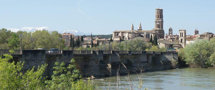 Tudela. 8 razones con fundamento para visitarla.  Vistas de Tudela desde el rio Ebro