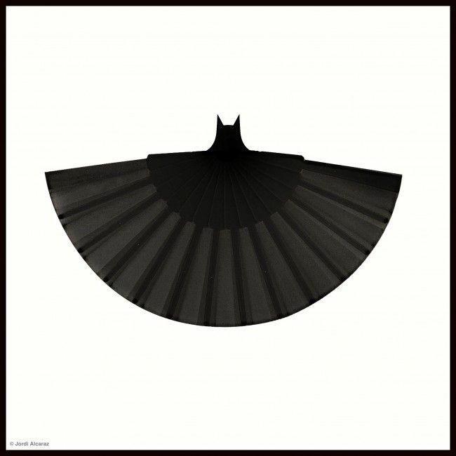 Jordi Alcaraz | Fine Art Photography | Metaphorically Speaking. BAT FAN