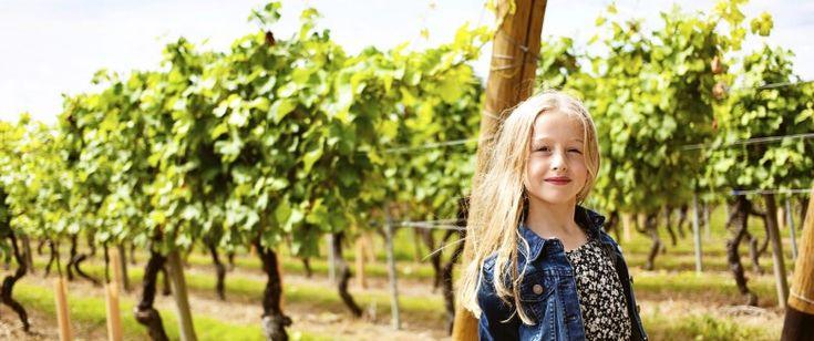 """""""Les effets des intoxications aiguës sont connus : irritations de la peau, des yeux, allergies, vomissements, toux et gênes respiratoires. Mais quels sont les risques à plus long terme pour le voisinage ?""""... http://www.santemagazine.fr/pesticides-que-risque-t-on-vraiment-quand-on-habite-pres-d-un-champ-ou-de-vignes-74117.html"""