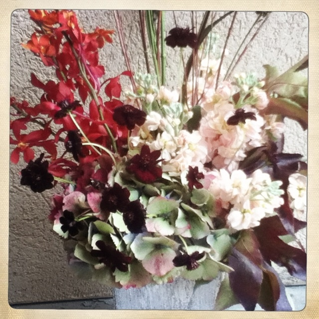 Chocolate Cosmos, Stock, Liquid Amber, Hydrangea, Mokara Orchids,