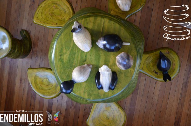 Tortuga Apapacho está jugando con los #Endemillos en el nuevo showroom de #Factoria