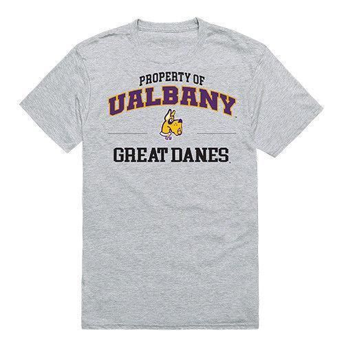 University Of Albany The Great Dane Ncaa Property Tee T Shirt