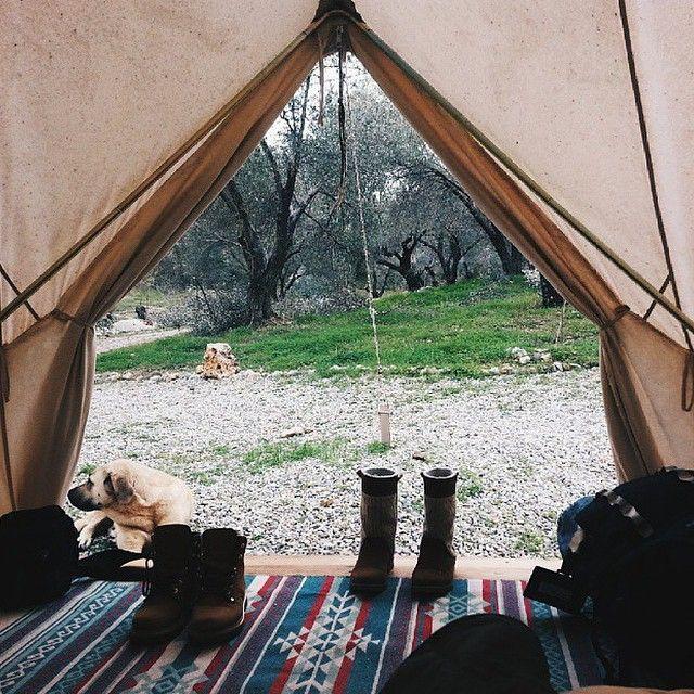 Camp Stuff #WildTraveller