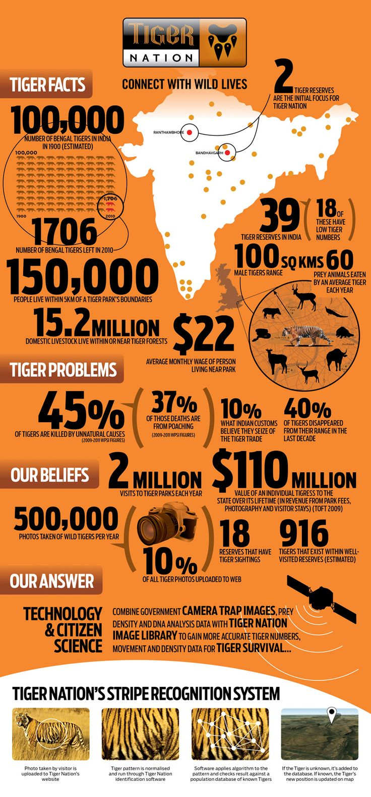 Take a look at the statistics related to Tigers in India, I am supporting Tiger Nation, Please lend your support to this website too