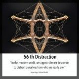 56 Distraction, Shadow