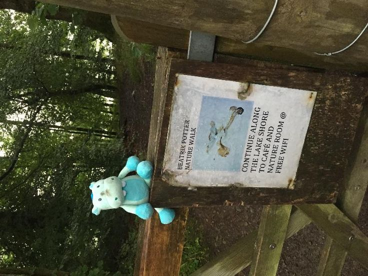 Found on 02 Aug. 2016 @ Esthwaite Water, Near Sawrey. I know these things pop up but when you find the potential lost treasure you feel a responsibility. Blue hippo was found on the Beatrix Potter Nature Walk, next to Esthwaite Water (Near Sawrey). If... Visit: https://whiteboomerang.com/lostteddy/msg/ps7u7q (Posted by Steve on 03 Aug. 2016)