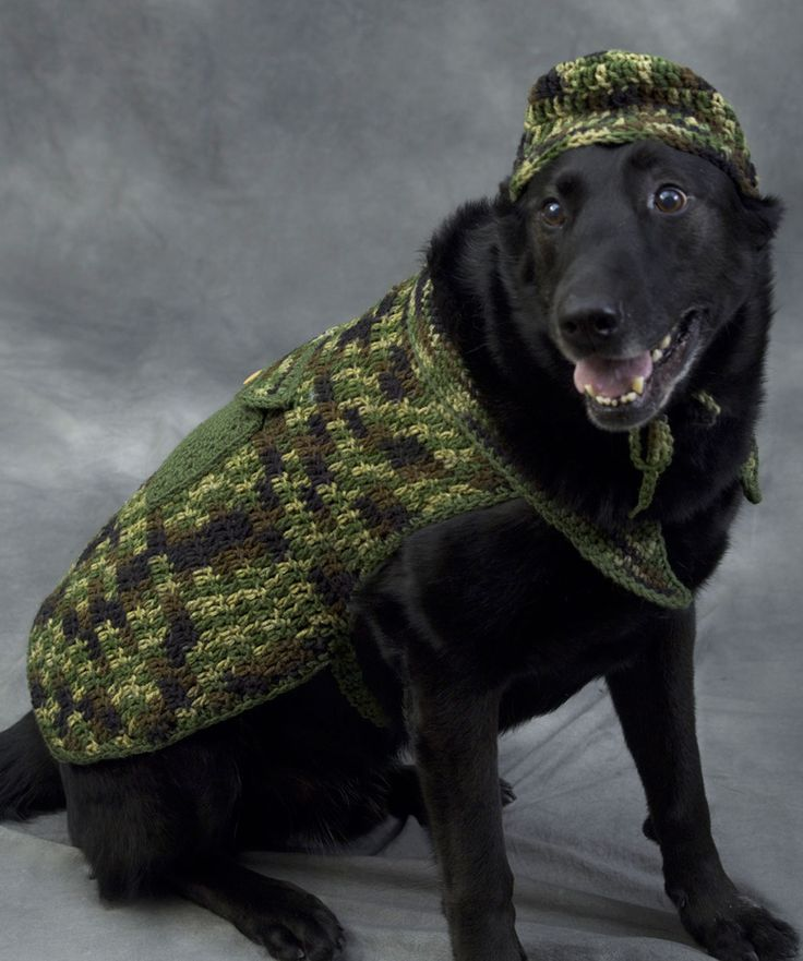 Hunter Dog Crochet Pattern                                            | http://www.redheart.com/free-patterns/hunter-dog
