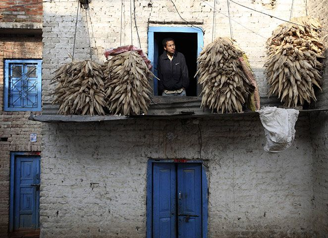 Credit: Navesh Chitrakar/Reuters A man looks out of a window in his hilltop home in Lalitpur
