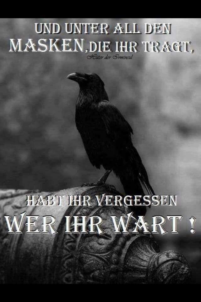 Pin Von Hagazussa Auf Spruchlein Und Gedanken Weisheiten Spruche Spruche Zitate Spruche