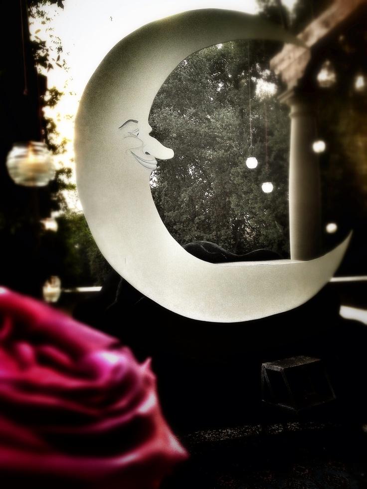 The moon and the stars, La Rosa Canina FIRENZE www.larosacaninafioristi.it