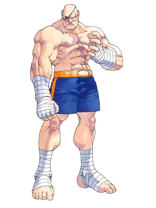 "Sagat - A Character from Street Fighter  He is often called the ""Emperor of Muay Thai""."