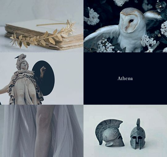 Athena 1/2