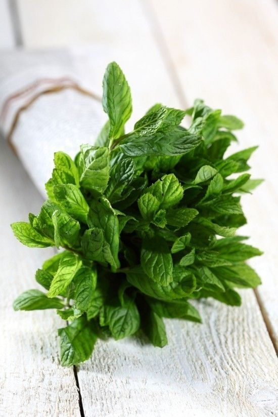 Mint. (I love the idea of giving bouquets of herbs as gifts!)  Even with the Olympics - the bouquets of green bay leaves? were wonderful.
