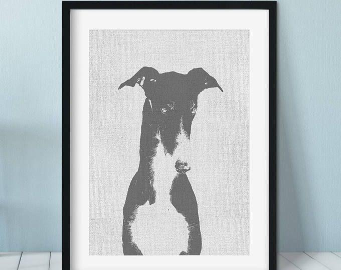 Greyhound Bow Dog Photograph Print Wall Art Greyhound Dog Photograph Greyhound Art Dog Print